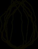 Logo für das Museum Monrepos in Neuwied